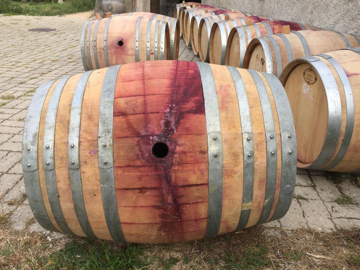 Wine Container Quiz