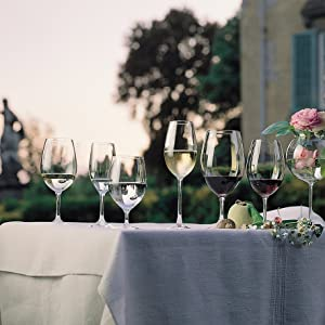 Riedel Ouverture Wine Glass